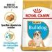 Royal Canin Bulldog 30 Junior 12 kg
