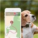 Tractive GPS Pet Tracker Hunters Edition