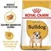 Royal Canin Bulldog 24 Adult 12 kg