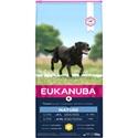 Eukanuba Mature & Senior Large Breed Kip 15 kg