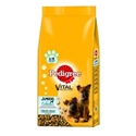 Pedigree Junior Maxi 2 x 10 kg
