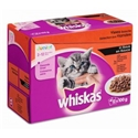 Whiskas Pouch Junior In Saus 4 x (12 x 100 gr)