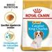 Royal Canin Cavalier King Charles Spaniël Junior 1,5 kg
