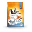 Fokker Adult +Fresh Fish Kat 2,5 kg
