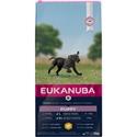 Eukanuba Puppy & Junior Large Breed Kip 3 kg