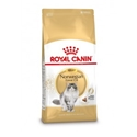Royal Canin Norwegian Forest Kat 2 kg