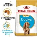 Royal Canin Cocker Junior 3 kg