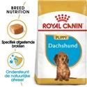 Royal Canin Dachshund 30 Junior 1,5 kg