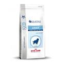 Royal Canin VCN Pediatric Junior Large Digest & Osteo Hond 4 kg