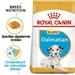 Royal Canin Dalmatian Junior 25 12 kg