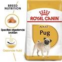 Royal Canin Pug (Mopshond) Adult 1,5 kg