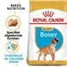 Royal Canin Junior Boxer 3 kg