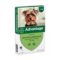Advantage 40 Hond tot 4 kg 4 pipetten