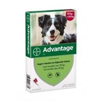 Advantage 250 Hond 10-25 kg 4 pipetten