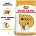 Royal Canin Beagle Adult 3 kg