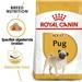 Royal Canin Pug (Mopshond) Adult 3 kg