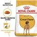 Royal Canin Great Dane 23 Adult 12 kg