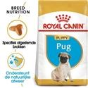 Royal Canin Pug (mopshond) Junior 1,5 kg