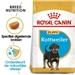 Royal Canin Rottweiler 31 Junior 12 kg