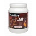 Nutribird A19 High Energy Opfokvoer voor Vogels 3 kg