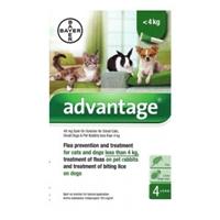 Advantage 40 Hond tot 4 kg 3 x 4 pipetten