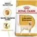Royal Canin Labrador Retriever 30 Adult 3 kg