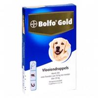 Bolfo Gold Hond 250 - 4 Pipetten