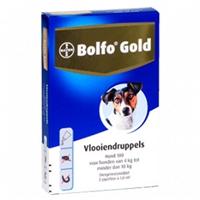 Bolfo Gold Hond 100 - 2 Pipetten