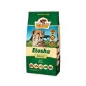 Wildcat Etosha Adult 500 gr