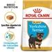 Royal Canin Yorkshire Terriër 29 Junior 1,5 kg
