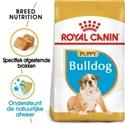 Royal Canin Bulldog 30 Junior 3 kg