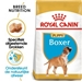 Royal Canin Junior Boxer 2 x 12 kg